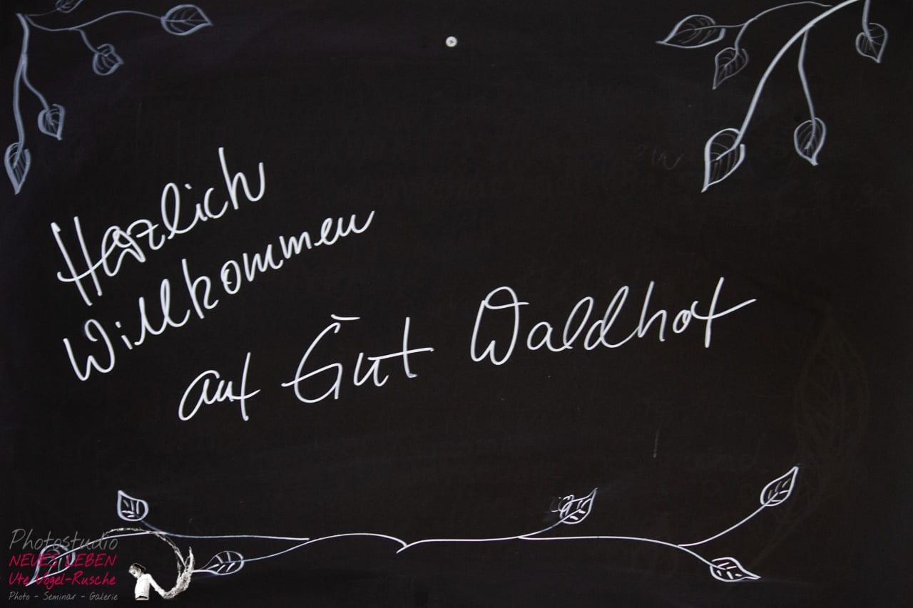 Photostudio-neues-leben-ute-vogel-rusche-HKH-WaldhofOpen2019-web-1107